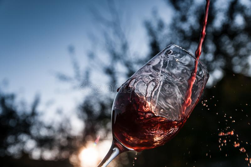 Pouring the wine. At sunset, blue background royalty free stock images