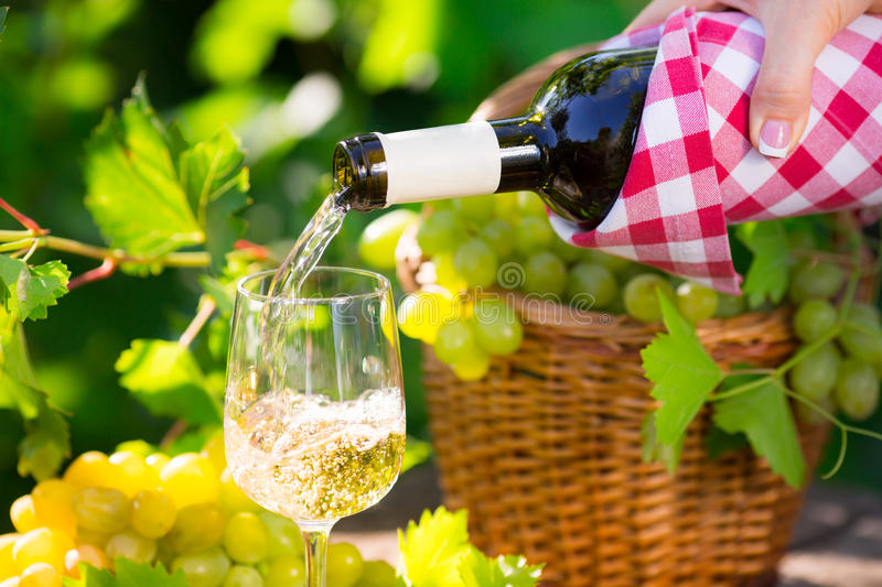 Pouring wine. Pouring white wine in glass outdoors stock photos