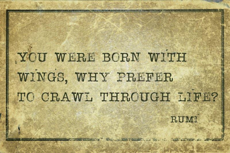 Pourquoi rampement Rumi photographie stock