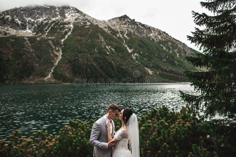 ?pouser des couples embrassant pr?s du lac en montagnes de Tatra en Pologne Morskie Oko Beau jour d'?t? images stock