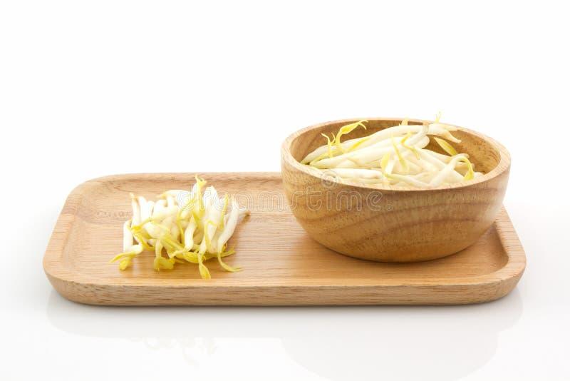 Pousse de haricot dans dans le plat en bois photographie stock libre de droits