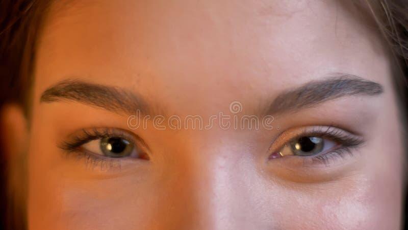 Pousse de plan rapproché du jeune Caucasien attirant femelle avec ses yeux regardant directement la caméra et souriant gaiement photos stock