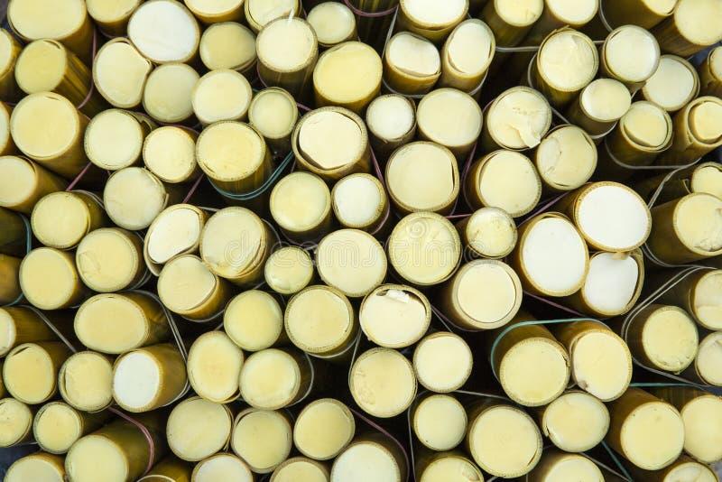 Pousses de bambou molles photos stock