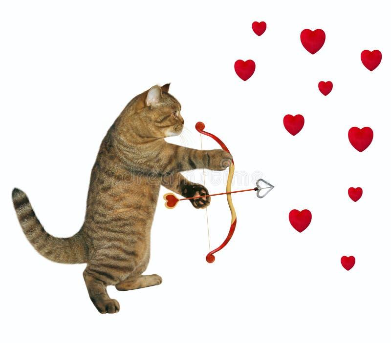 Pousses de chat avec une flèche illustration stock