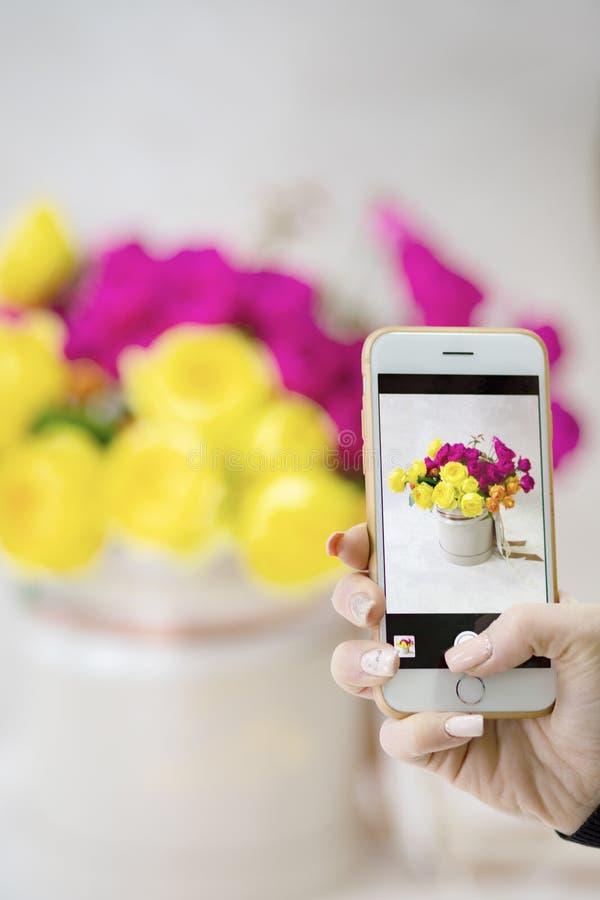 Pousses de fille sur votre beau bouquet rustique de smartphone dans les mains du ` s d'ami photo libre de droits