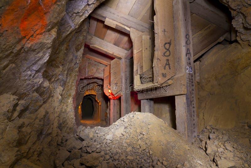 Pousses de minerai de mine d'or photos libres de droits