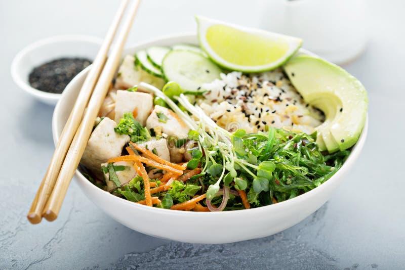 Poussez la cuvette avec le tofu, le riz et les légumes de soie images libres de droits
