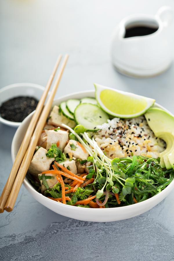 Poussez la cuvette avec le tofu, le riz et les légumes de soie photos stock