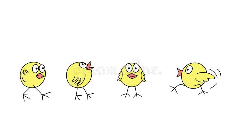 Poussins drôles images stock
