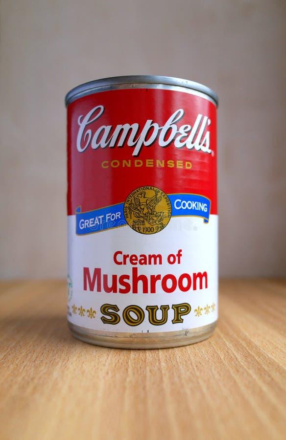 Pouvez de la crème du ` s de Campbell de la soupe à champignons dans la lumière naturelle image stock