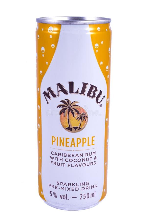 Pouvez de Malibu photographie stock libre de droits
