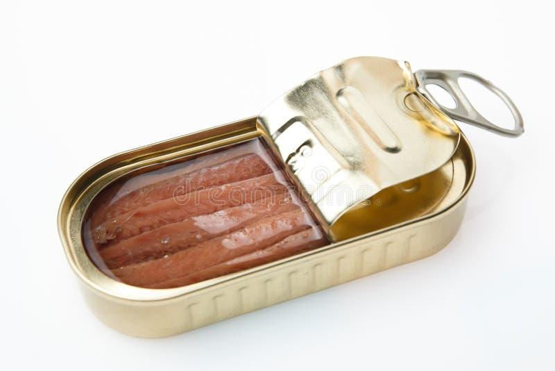 Pouvez des anchois photographie stock libre de droits