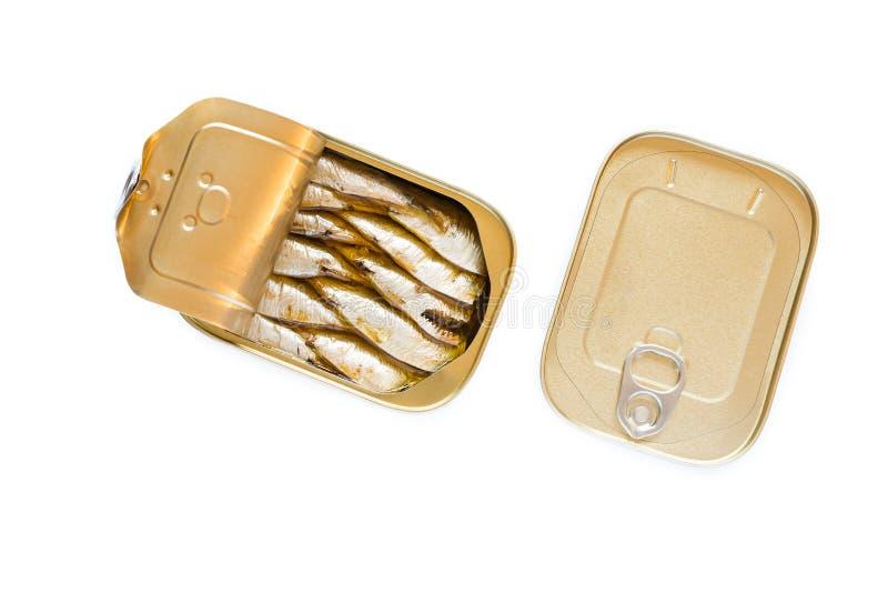 Pouvez des sardines sur le fond blanc image stock