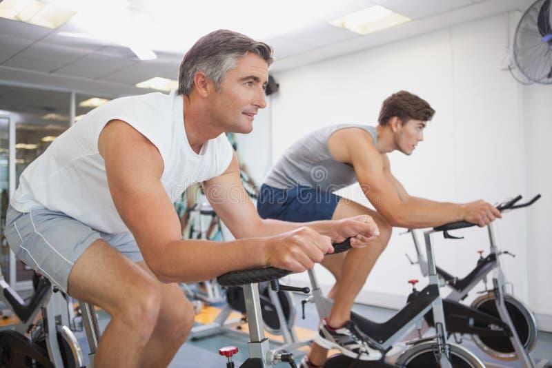 Povos aptos que dão certo nas bicicletas de exercício fotos de stock royalty free