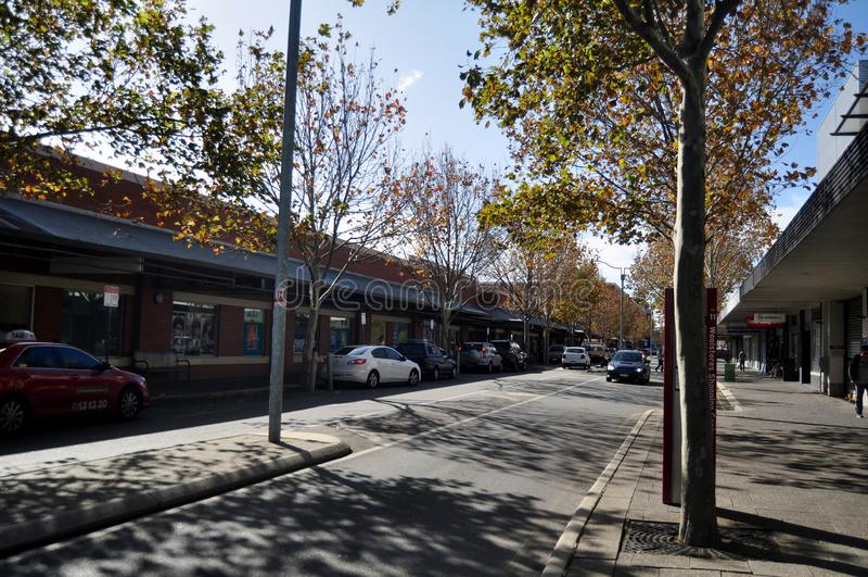 Povos australianos que andam e árvore de bordo no pavimento em Adelaide Street em Perth, Austrália fotos de stock
