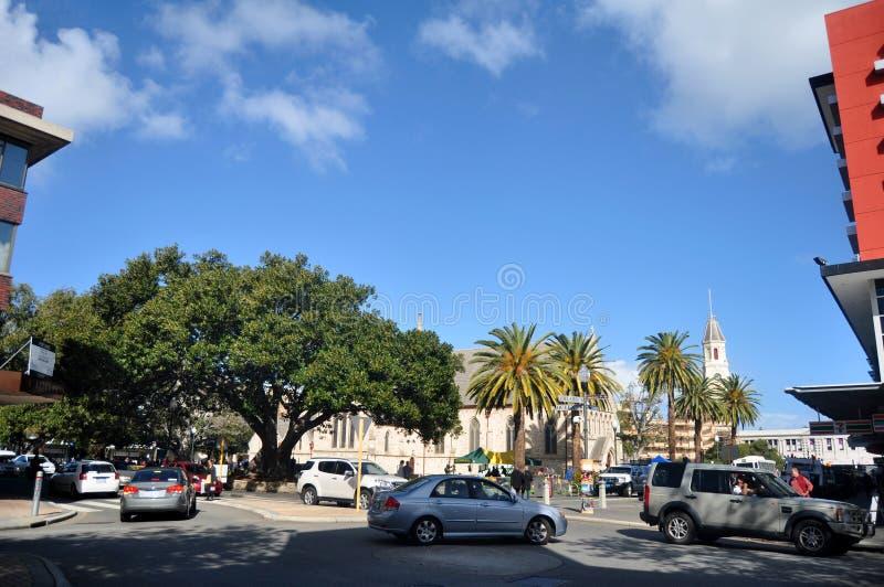 Povos australianos que andam e árvore de bordo no pavimento em Adelaide Street em Perth, Austrália fotografia de stock royalty free