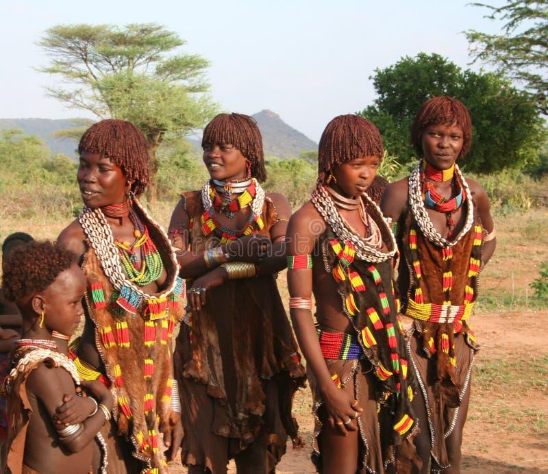 Povos de Hamer de Etiópia