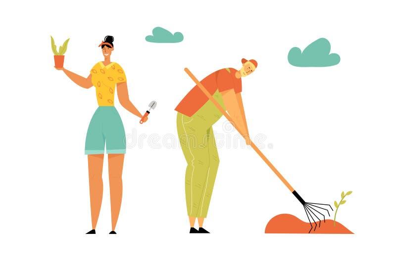 Povos de jardinagem Jardineiro do homem e da mulher que plantam e que importam-se das plantas que removem ervas daninhas da cama  ilustração stock