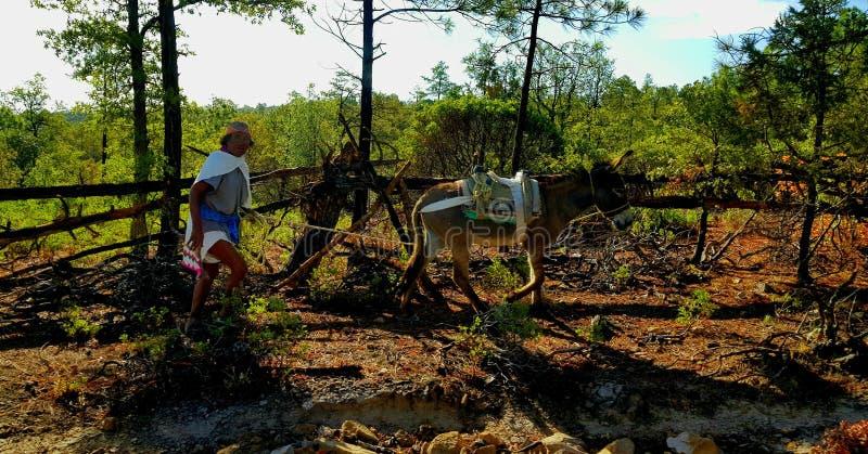Povos de Tarahumara fotografia de stock royalty free