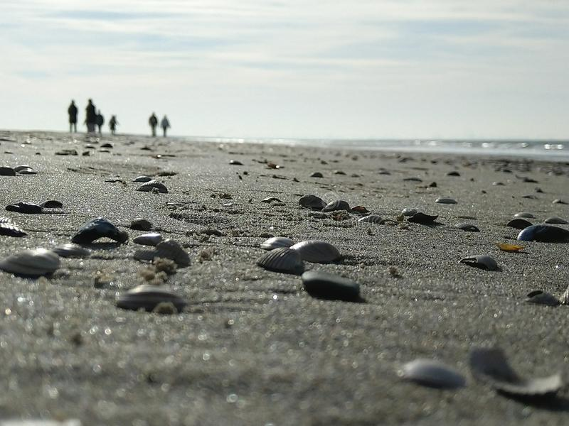 Povos desconhecidos na praia com escudos foto de stock