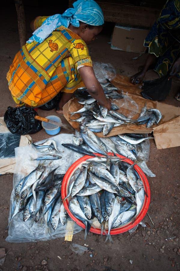 Povos do africano negro que recolhem e que preparam peixes foto de stock royalty free