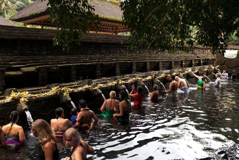 Povos do Balinese que rezam na água de mola santamente da associação sagrado em Pura Tirta Empul Temple, Tampaksiring, BALI, INDO imagem de stock royalty free