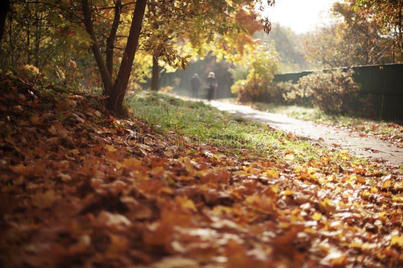 Povos do outono foto de stock