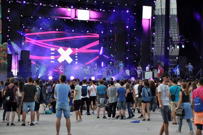 Povos do partido em um concerto vivo fotos de stock