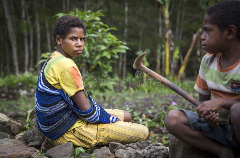 Povos do tribo de Dani em um campo imagem de stock