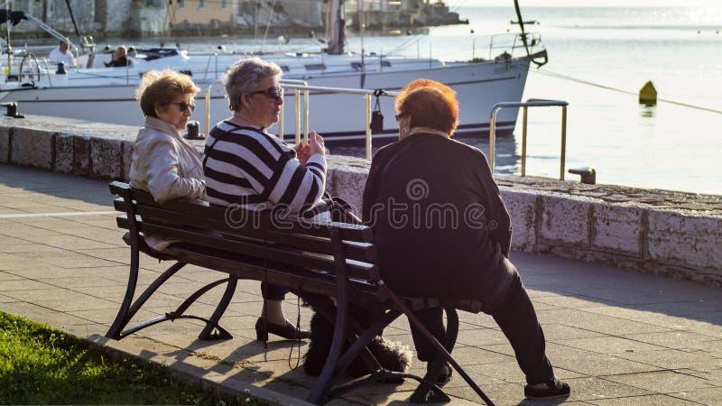 Povos felizes de Rovinj fotos de stock royalty free