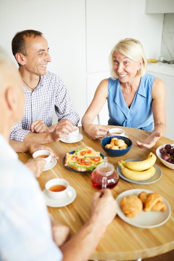 Povos maduros que apreciam o almoço e o chá fotografia de stock royalty free