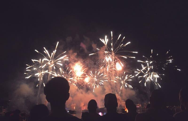 Povos mostrados em silhueta que olham uma exposição dos fogos-de-artifício imagens de stock royalty free