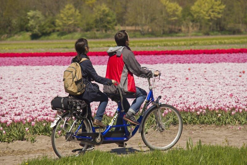 Povos na bicicleta em tandem imagem de stock royalty free