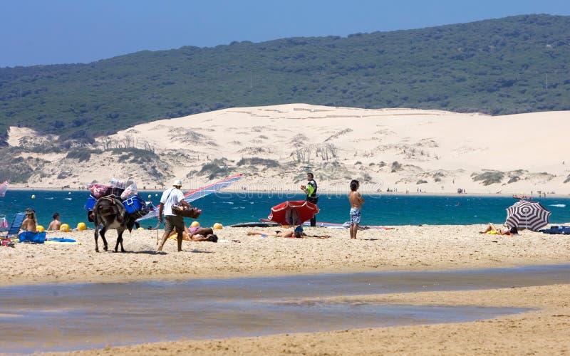 Povos na praia kitesurfing ativa ocupada em Spain fotos de stock