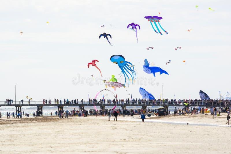 Povos no molhe em Adelaide International Kite Festival imagem de stock royalty free
