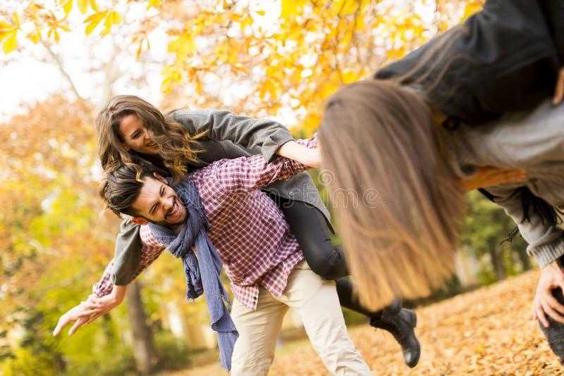 Povos no parque do outono foto de stock royalty free
