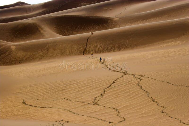 Povos que andam em dunas de areia fotografia de stock