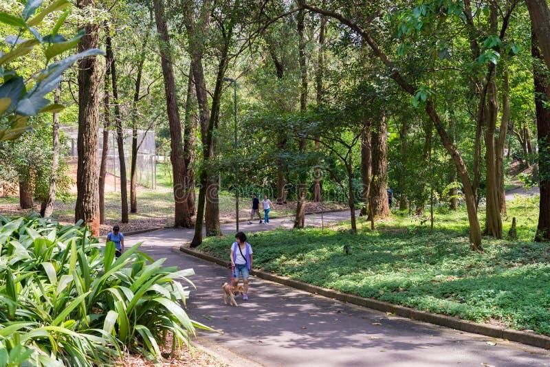 Povos que apreciam o parque de Aclimacao em Sao Paulo imagem de stock