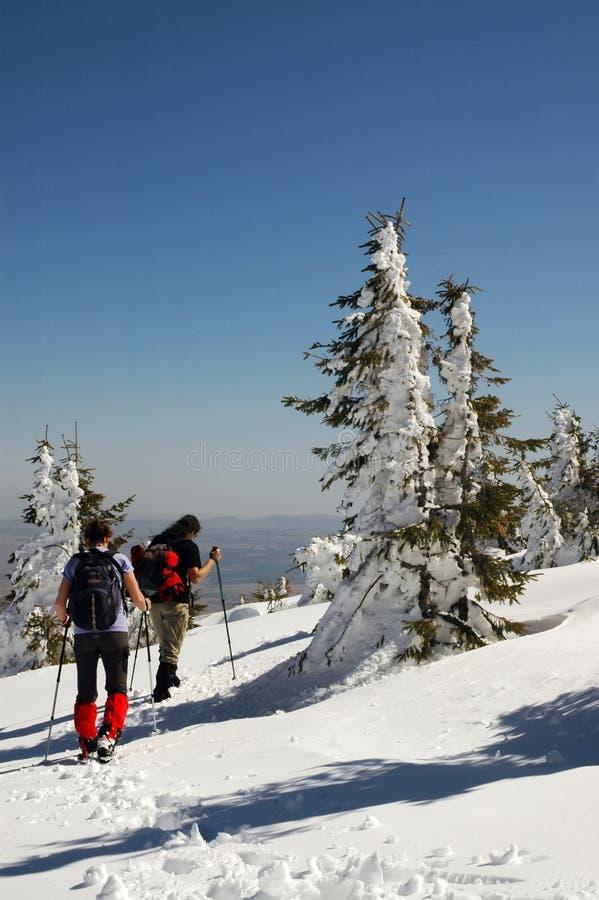 Povos que caminham em montanhas bonitas do inverno foto de stock