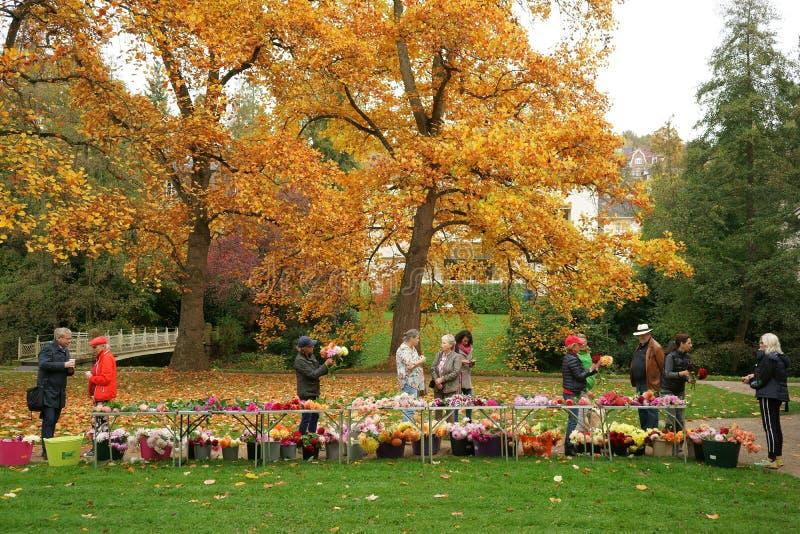 Povos que compram dálias cortadas para o parque público Alemanha da venda imagem de stock royalty free