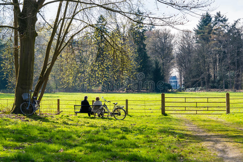 Povos que descansam no banco no parque da propriedade Boekesteyn, Netherland fotos de stock