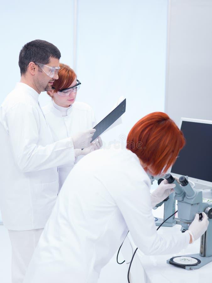 Povos que estudam em um laboratório de química foto de stock
