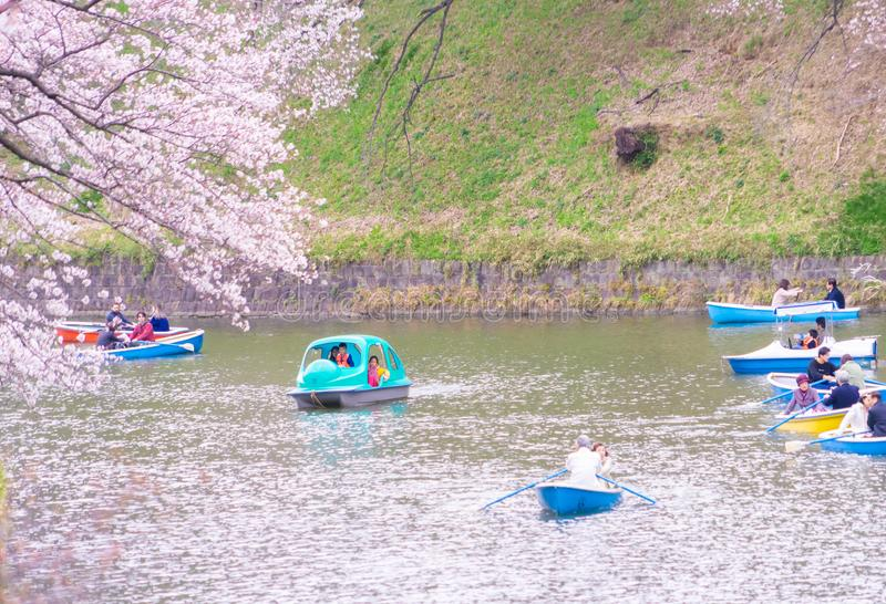 Povos que montam o barco de p? no canal de Chidorigafuchi para ver Cherry Blossom imagens de stock