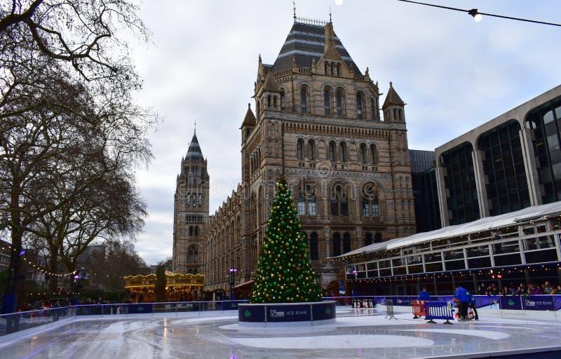 Povos que patinam no gelo na pista de gelo do Natal do museu da história natural Londres, Reino Unido, em janeiro de 2019 fotos de stock royalty free