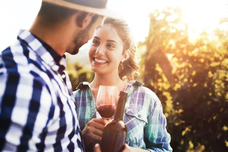 Povos que provam o vinho no vinhedo imagens de stock