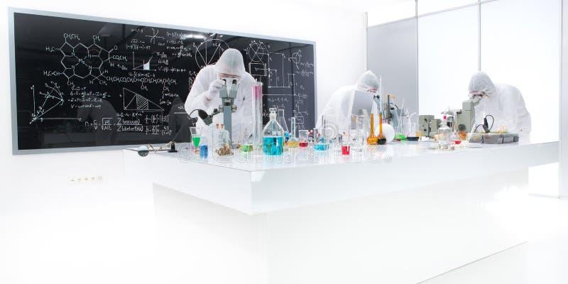 Povos que trabalham em um laboratório de química foto de stock royalty free