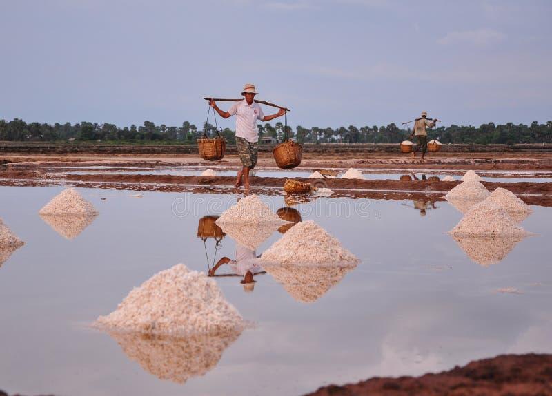 Povos que trabalham no campo de sal em Camboja fotos de stock royalty free