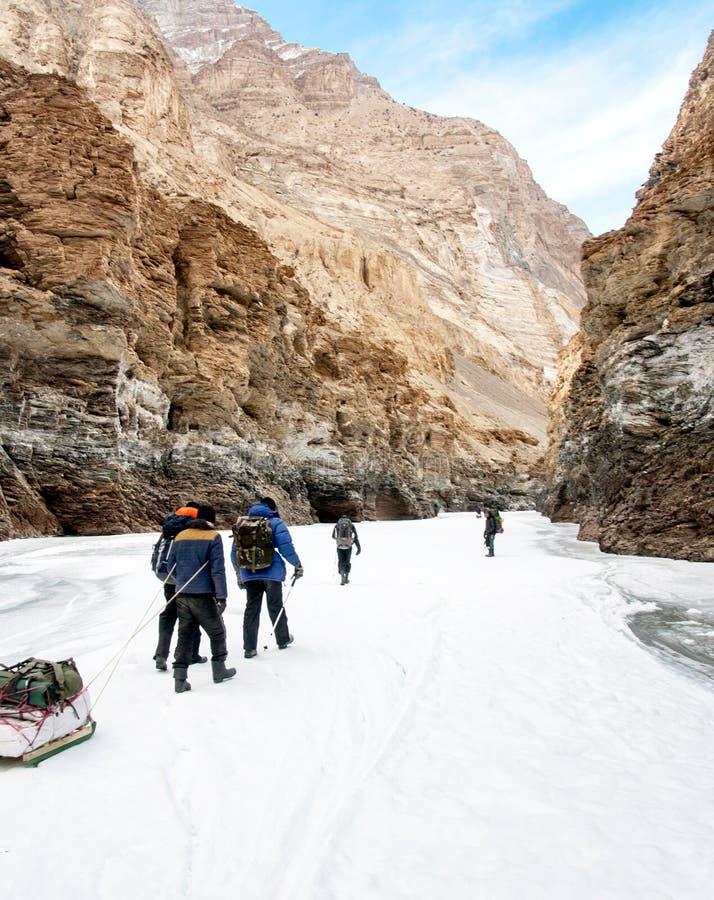 Povos que trekking no rio zanskar congelado Trekkers que puxam sacos no gelo Passeio na montanha de Chadar, Ladakh India foto de stock royalty free