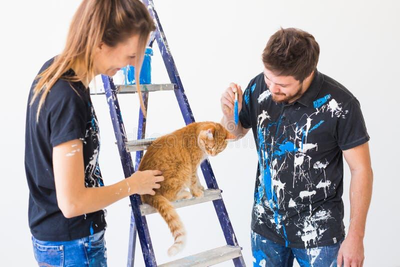 Povos, renovação, animal de estimação e conceito do reparo - retrato do homem e da mulher engraçados com o gato que faz a redecor fotografia de stock