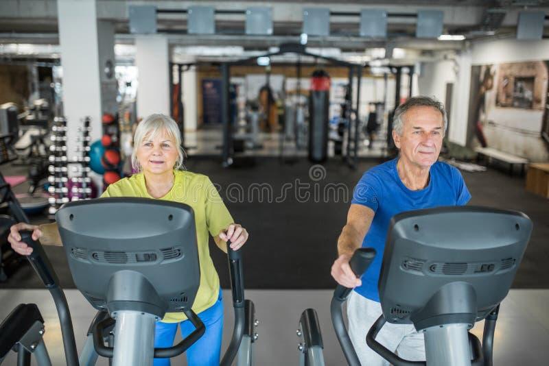 Povos superiores contentes que treinam na escada deslizante no gym fotografia de stock royalty free